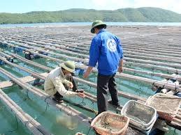 GAA hoàn thành tiêu chuẩn BAP cho nhiều loài thủy sản