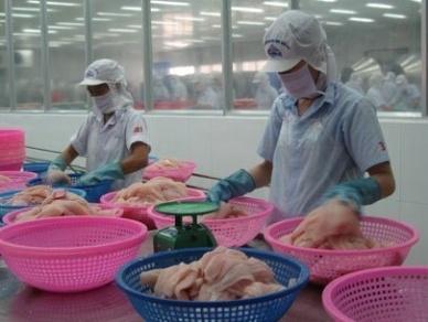 Siêu thị cam kết kinh doanh cá đạt chứng nhận MSC tăng lên tại Anh