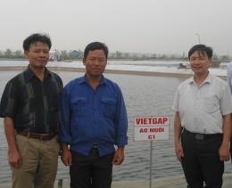 VinaCert trao chứng nhận VietGAP về nuôi tôm thẻ chân trắng cho Doanh nghiệp tư nhân Tân Vân