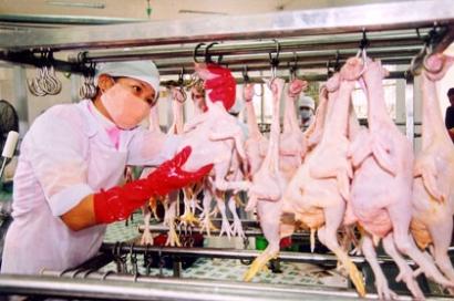 Yêu cầu về con người khi thực hiện ISO 22000/HACCP