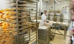 Xác định chỉ tiêu cần thử nghiệm đối với thức ăn chăn nuôi
