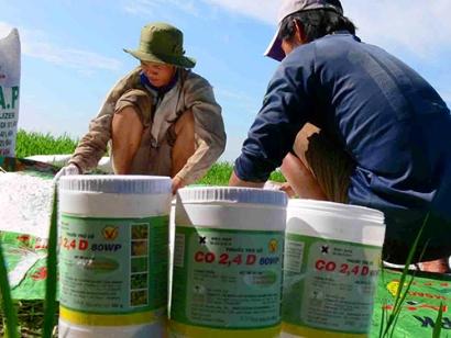 Thực hiện chứng nhận và công bố hợp quy thuốc bảo vệ thực vật