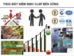 Quản lý ATTP của các DN bán lẻ: Cần sự chung tay của cả cộng đồng