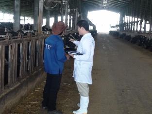 [Video] Chứng nhận VietGAP chăn nuôi