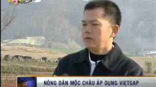 [Video] VTV1 - Công ty CP Giống bò sữa Mộc Châu được VinaCert cấp chứng chỉ VietGAP
