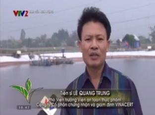 [Video] VTV2 - Bạn của nhà nông: Mô hình nuôi tôm theo VietGAP - VinaCert