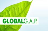 Lợi ích chứng nhận GlobalG.A.P