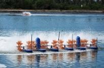 Chứng nhận SP xử lý môi trường nuôi trồng thủy sản