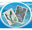 Giá trị chất lượng và kinh tế của sản phẩm thủy sản đạt chứng nhận VietGAP